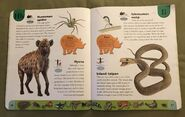 Deadly Creatures Dictionary (10)