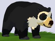 Spectacled Bear WOZ