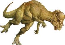 800px-Pachycephalosaurus.jpg