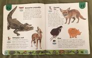 Deadly Creatures Dictionary (7)