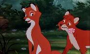 Fox-and-the-hound-disneyscreencaps.com-7471