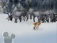 Little Einsteins Reindeer