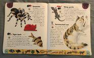 Pet Dictionary (23)