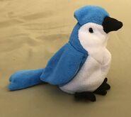Rocket the Blue Jay