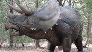 Triceratops (V3)