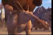 IA2002 Aardvark
