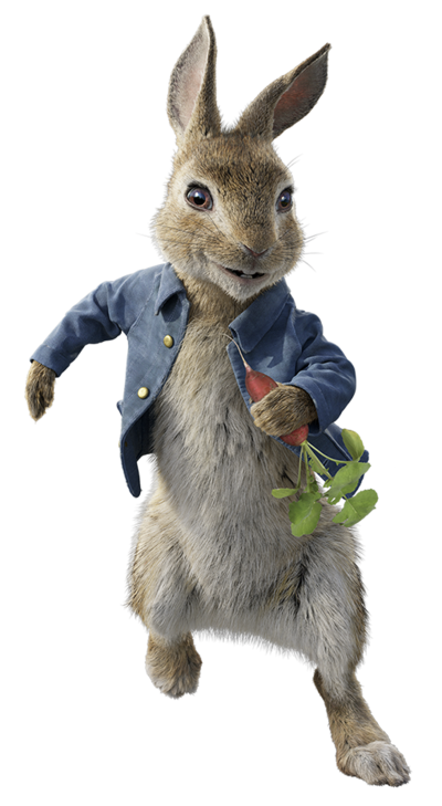 Peter rabbit 2018 character.png