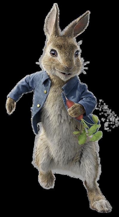 Peter rabbit 2018 character.png