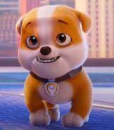 Rubble Paw Patrol the Movie