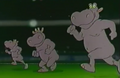 Zoo-cup-022-hippo