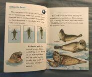 Animals of the Polar Regions (5)