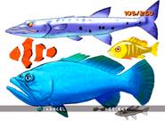 Fish ty-the-tasmanian-tiger