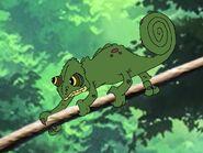 Rileys Adventures Panther Chameleon