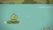 TLH Frog