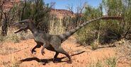Velociraptor (V2)