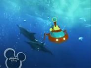 Little Einsteins Dolphins