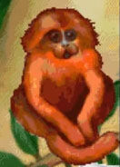 Monkey-jumpstart-preschool