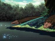 Present-Day Alligators SOZI