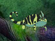 Rileys Adventures Veiled Chameleon