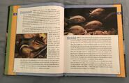 Scholastic Encyclopedia Of Animals (10)