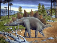 Stegosaurus-encyclopedia-3dda