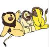 We Bare Lions
