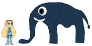 Star meets South African Bush Elephant