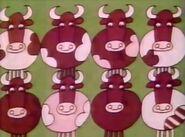 8-cows