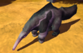Giant Anteater IC