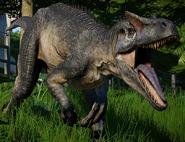 JWE Allosaurus