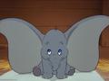 Mr Dumbo 2