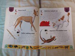 Pet Dictionary (11).jpeg