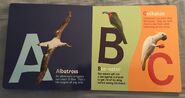 ABC Birds (American Museum of Natural History) (1)