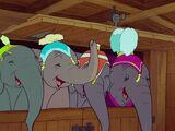 Elephants (Dumbo)