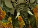 Golden Book Video African Elephant