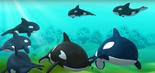 Orca octonauts