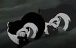 Skunk ynco