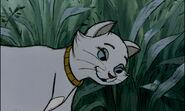 Aristocats-disneyscreencaps.com-2471