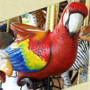Conservation Carousel Scarlet Macaw