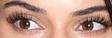 Kendall Jenner Eyes