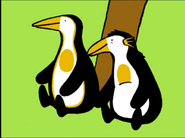 PAZ Penguins