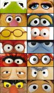 The Muppets Eyes