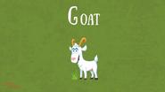 Bonny Wondy Goat