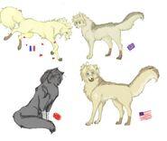 Hetalia Wolves (Part 2)