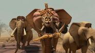 Madagascar2-disneyscreencaps.com-7384