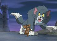 Tommy as werewolf cat