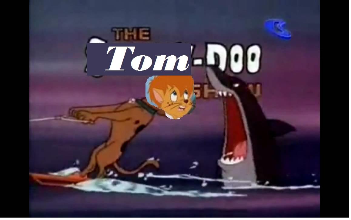 The Tom Doo Show