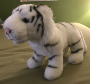 Xiang the White Tiger