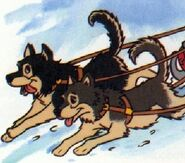 Husky-in-things-that-go-from-disney-discovery-series