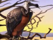 Jumpstart Vulture